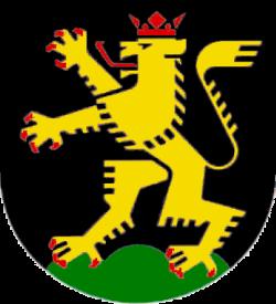 DJ Heidelberg - Das Stadtwappen von Heidelberg
